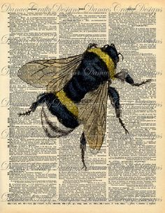 bumble bees artwork - this type of art seem to be selling on etsy