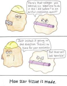 Scar tissue is artistically placed collagen ;)