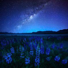http://geekiss.com/2014/04/o-ceu-estrelado-da-australia-e-nova-zelandia-por-atomiczen/