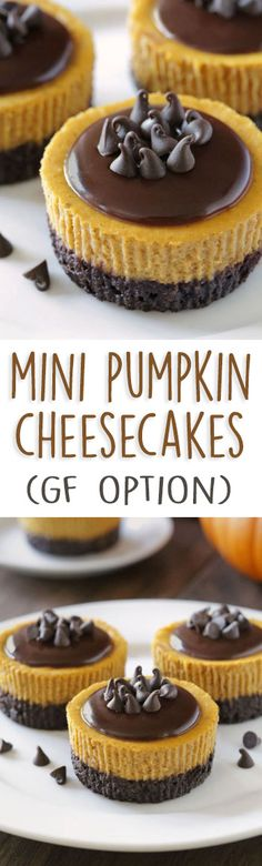 Mini Pumpkin Cheesecakes {gluten-free, grain-free, whole grain options – can also be made with all-purpose flour!}