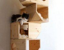 木製模塊化貓屋