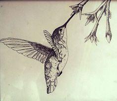 Humming Bird by KatieAmiot