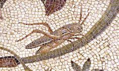Detail of a grasshopper, mosaic taken from Villa Zliten at Leptis Magna, Archaeological Museum of Tripoli, Libya