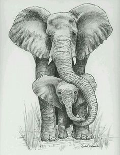Pen and Ink drawing of mama and baby elephant - Print reprod.- Pen and Ink drawing of mama and baby elephant – Print reproduction Pen and Ink drawing of mama and baby elephant – Print reproduction - Mother And Baby Elephant, Elephant Love, Baby Elephants, Small Elephant, Elephant Poster, Baby Animals, Elephant Icon, Elephant Outline, Mandala Elephant