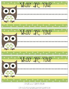 Owl name plates Student Name Plates Student Name Tags Owl Name Tags Desk