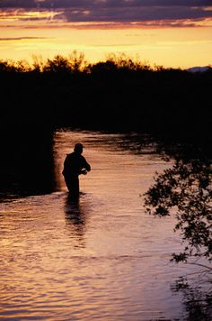 Fly Fisher in Ruby River at Twilight