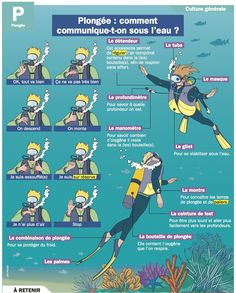 Science infographic and charts Science infographic and charts Plongée : comment communique-t-on sous l'eau.