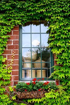Window At The Nelson Cheese Factory   Nelson WI   #WIGreatRiverRd WISCONSIN Great River Road