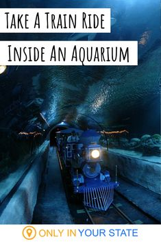 If you enjoy unique adventures and experiences, check out this under water train ride in an aquarium. Kids and adults alike will love this top attraction near Houston, Texas. Found at Downtown…More Texas Vacations, Vacation Places, Vacation Trips, Dream Vacations, Vacation Spots, Places To Travel, Family Vacations, Italy Vacation, Kid Friendly Vacations