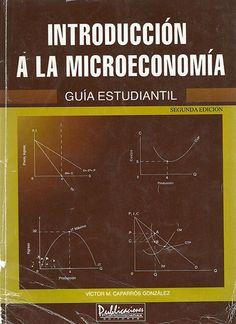 Introduccion a la microeconomia- One1book