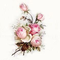 papel para decupagem Vintage Cards, Vintage Images, Vintage Rosen, Etiquette Vintage, Decoupage Printables, Free Printable Art, Decoupage Vintage, Botanical Prints, Vintage Flowers