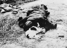 Dead French soldier, June 1940. A dog lies devotedly next to his body.