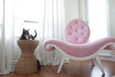 amazing pink chair @Julia Richey photographer