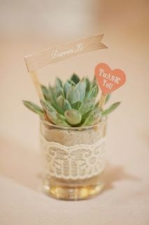 DIY Wedding Plant Favors are Perfect for a Green Wedding Potted succulent wedding favor with flag as Wedding Plants, Succulent Wedding Favors, Diy Wedding Favors, Wedding Gifts, Wedding Decorations, Wedding Souvenir, Wedding Centerpieces, Shower Centerpieces, Wedding Keepsakes
