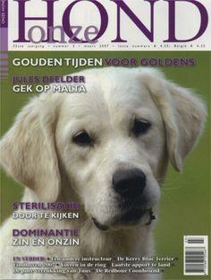 Onze Hond