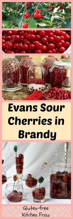 Use your Evans cherry harvest to make these delicious Sour Cherries in Brandy