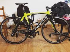 Pinarello Razha talla 51 y garantía de un año  Encuéntrala en Bkie!  #ciclismo #cyclingexperience #cycling #lifestyle #roadbike #bici #btt #roadbike #biker #bikelife #niner #bicicleta #bike #MTB