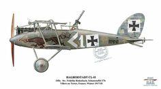 Halberstadt C II