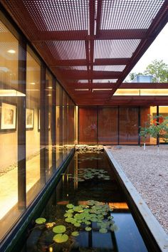 The koi pond at the back of this house runs the length of the glass walled hallway leading to the master bedroom inside.