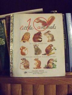 fun children's book