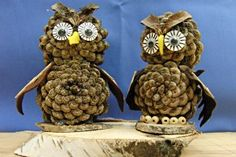 sweet cones (prank) owls Source by Pinecone Crafts Kids, Owl Crafts, Pine Cone Crafts, Paper Plate Crafts, Autumn Crafts, Nature Crafts, Diy Arts And Crafts, Handmade Christmas Decorations, Rustic Christmas
