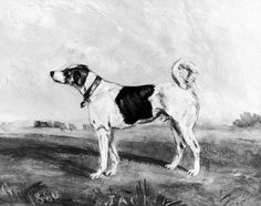'London Jack', Railway collecting dog, c 18