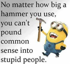 You can even try a sledge hammer and it doesn't work!  Stupid is as stupid does - just as Forest said!