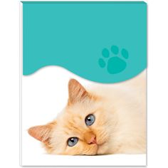Cats Protection Mini Magnetic Notepad