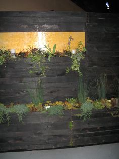 2013 Seattle - NW Flower & Garden Show, torched wood in wall cladding... very nice