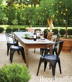 Love this inviting outdoor area! The table, the chairs and oh, those lovely lemon trees in containers!