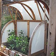Make a Critter-Proof Garden Greenhouse We're #itching4spring and dreaming about all the possibilities this season for a fresh start in the garden. Carmen Colli...