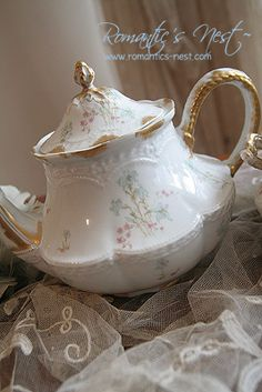 haviland Limoges ...the perfect shape and size !