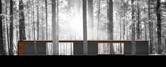 Linear Cabin,Elevation