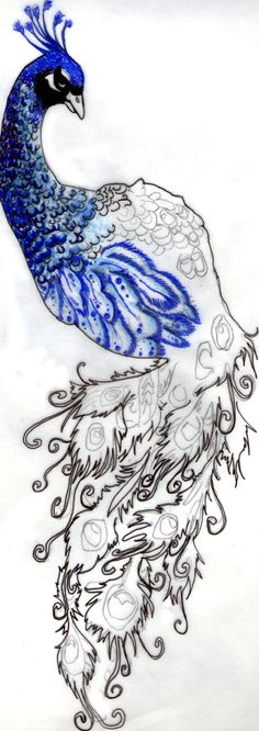Peacock Tattoo by ~BrandyBittersweet on deviantART