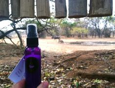 """With the recent rise of mosquito borne illnesses it's a good idea to be prepared when traveling. Our all-natural Lavender Insect Repellant was recently in South Africa with #worldwidelavender. Can you spot the warthog and wildebeest in the background? As the Boy Scouts say, """"be prepared!"""""""