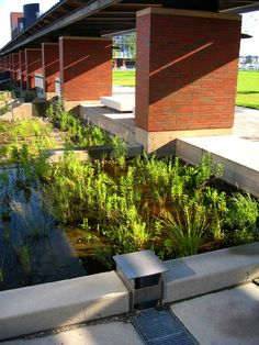 Durham College/ University of Ontario Institute of Technology | Durham Canada | DTAH #WSUD #SUDS #water #sustainable