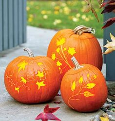 etched pumpkins - and more