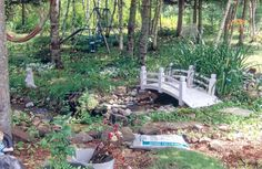 Garden Pond Pictures Of Ponds | Garden Pond Photo Gallery @ Water Plants For Ponds