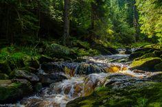 Blick auf die Schwarze Pockau im Schwarzwassertal. Im Erzgebirge.