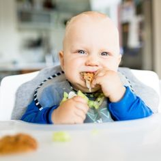 8 Month Old Baby Self-Feeding - Pinecones & Pacifiers Easy Toddler Lunches, Toddler Daycare, Baby Led Weaning, Baby Self Feeding, Fingerfood Baby, 8 Month Old Baby, Baby Finger Foods, First Baby, Meals For One