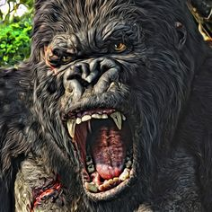 King Kong !