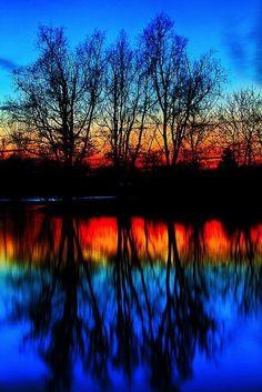 Beautiful colors! | nature | | reflections | #nature https://biopop.com/