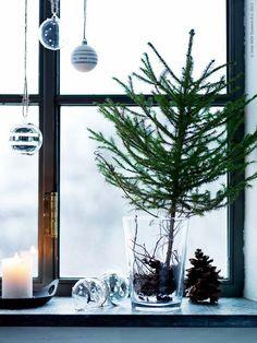 gran i vas glasburk julgran dekoration