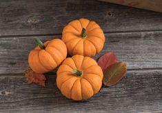 Pumpkin Squash, Powdery Mildew, Fruit Plants, Mini Pumpkins, Organic Seeds, Little Pumpkin, Garden Seeds, All Flowers, Pumpkin Decorating