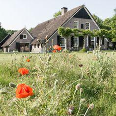 De Rheezer Kamer - B&B en theethuis Vechtdal | Bijzonder Plekje Bed & Breakfast, Old Farm Houses, Great Places, Homesteading, Countryside, Holland, New Homes, Farmhouse, Cottage