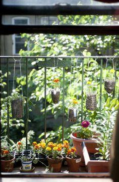 Cute mini garden.