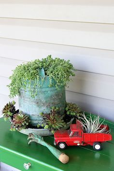 A chicken feeder or waterer filled with succulents is a great way to add a little farmhouse decor to your garden, porch or patio this summer. Other farmhouse garden planter ideas and tips on growing succulents are included! Fall Planters, Flower Planters, Garden Planters, Flower Pots, Outdoor Planters, Farmhouse Outdoor Decor, Farmhouse Landscaping, Farmhouse Garden, Farmhouse Ideas