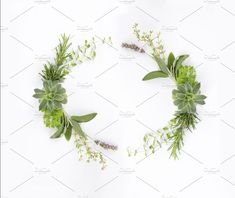 A wonderful crown of different plants and flowers. It can be used separately or as part of a bigger composition. It has enough clear space for your copy. Different Plants, Frames, Wedding Invitations, Stationery, Graphics, Studio, Floral, Flowers, Design