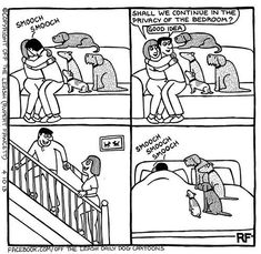 Privacy is Impossible #dogs
