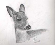 Kat Walk Designs: A Deer and More Birds